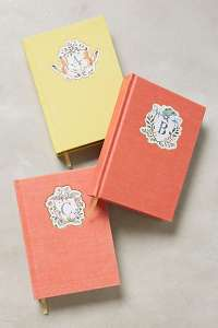 I'm unable to download a picture of my journal at the moment, but these are very similar to mine :)